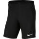 Wildcats Shorts